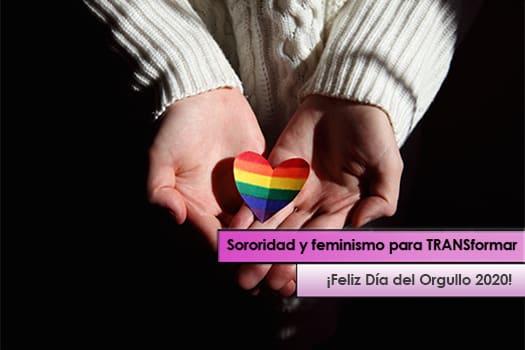 Día del Orgullo 2020 - abogadas de familia en Elche - Abogados de familia en Elche